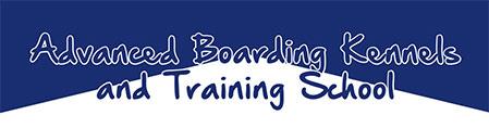 Advanced Boarding